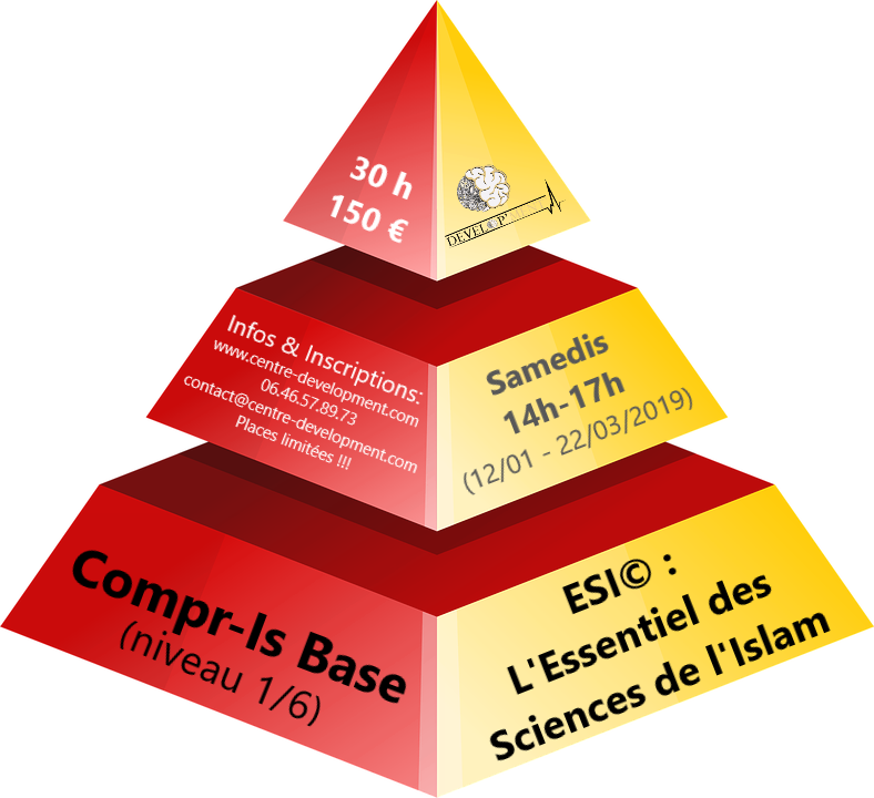 Formation Sciences de l'islam (niv. 1/6) :